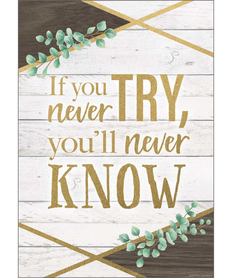 If You Never Try You Will Never Know Positive Poster