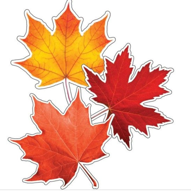 Maple Leaves Colorful Cut-Outs