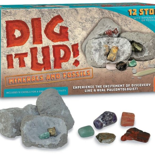 Dig it Up! Minerals and Fossils