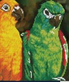Diamond Dotz-Rainbow Parrots