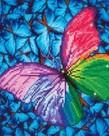 Diamond Dotz-Flutter By Pink