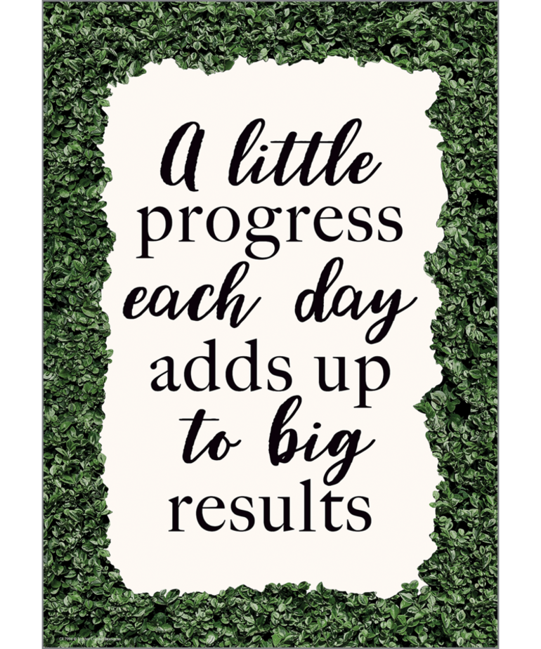 A Little Progress Each Day Positive Poster