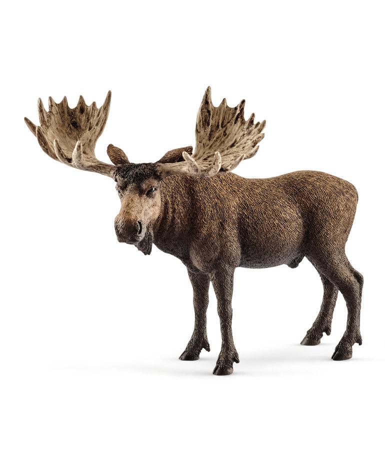 Schleich Bull Moose