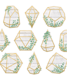 Eucalyptus Geometric Terrariums