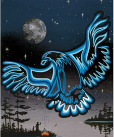 Eagle in the Sky Poster
