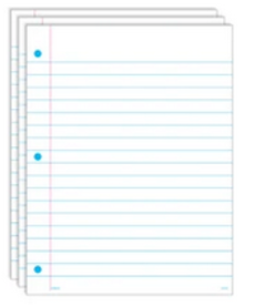 Write On/Wipe Off Notebook Paper 18PK