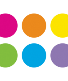 Spot On Dry-Erase Spots - Bright Circles