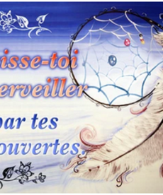 Decouvertes-French Poster