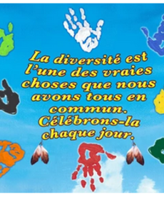Diversite- French Poster