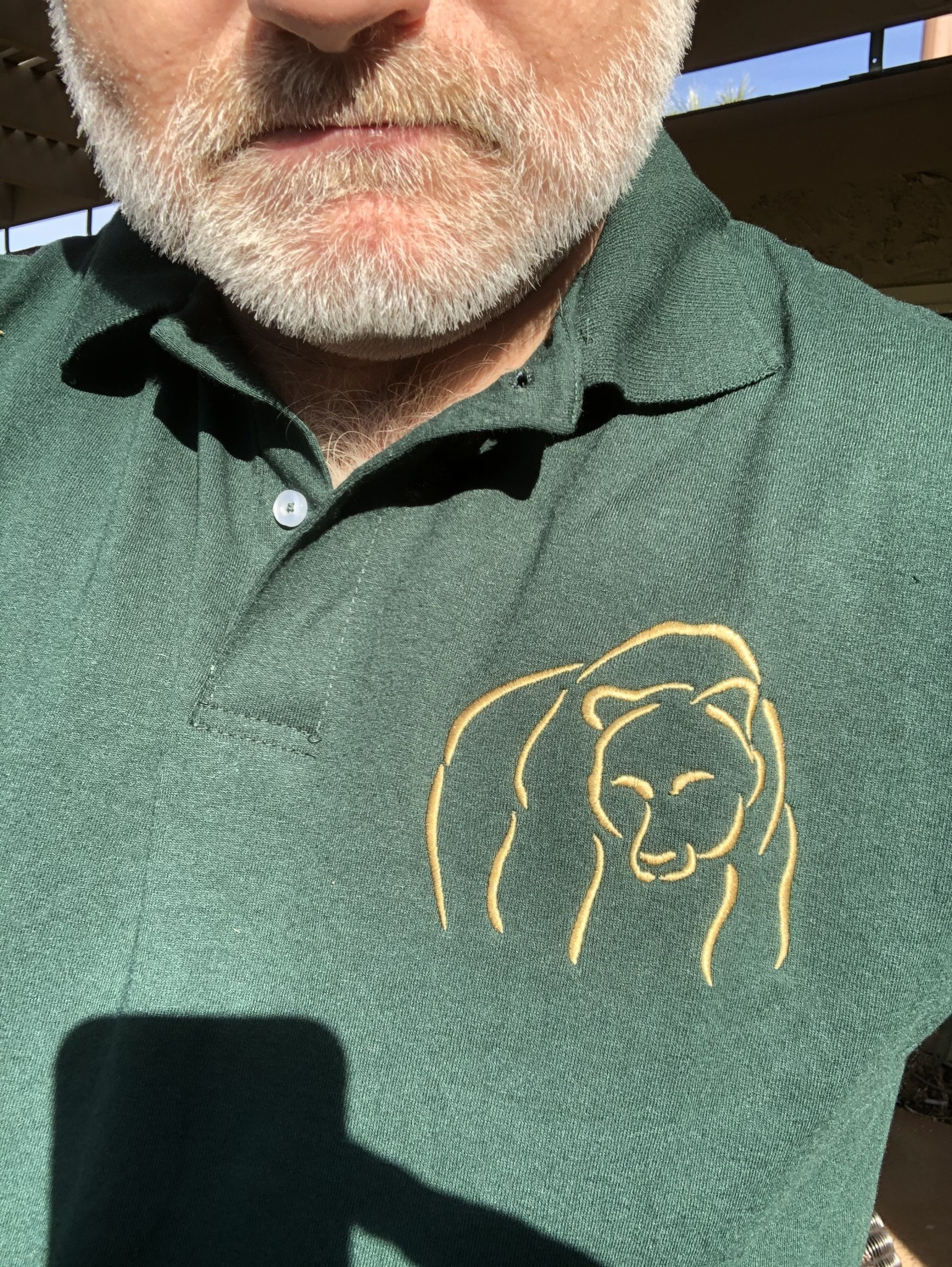 Bear Wear, Deep Forest Green with Gold Abstract Bear Design
