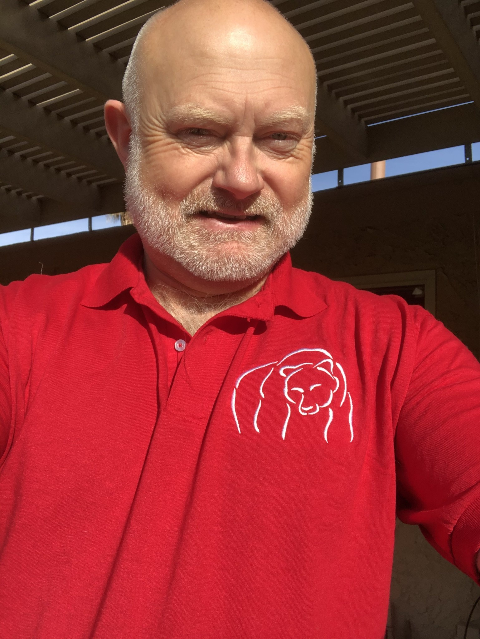 Holidays Bear Wear, Red with White Abstract Bear Design