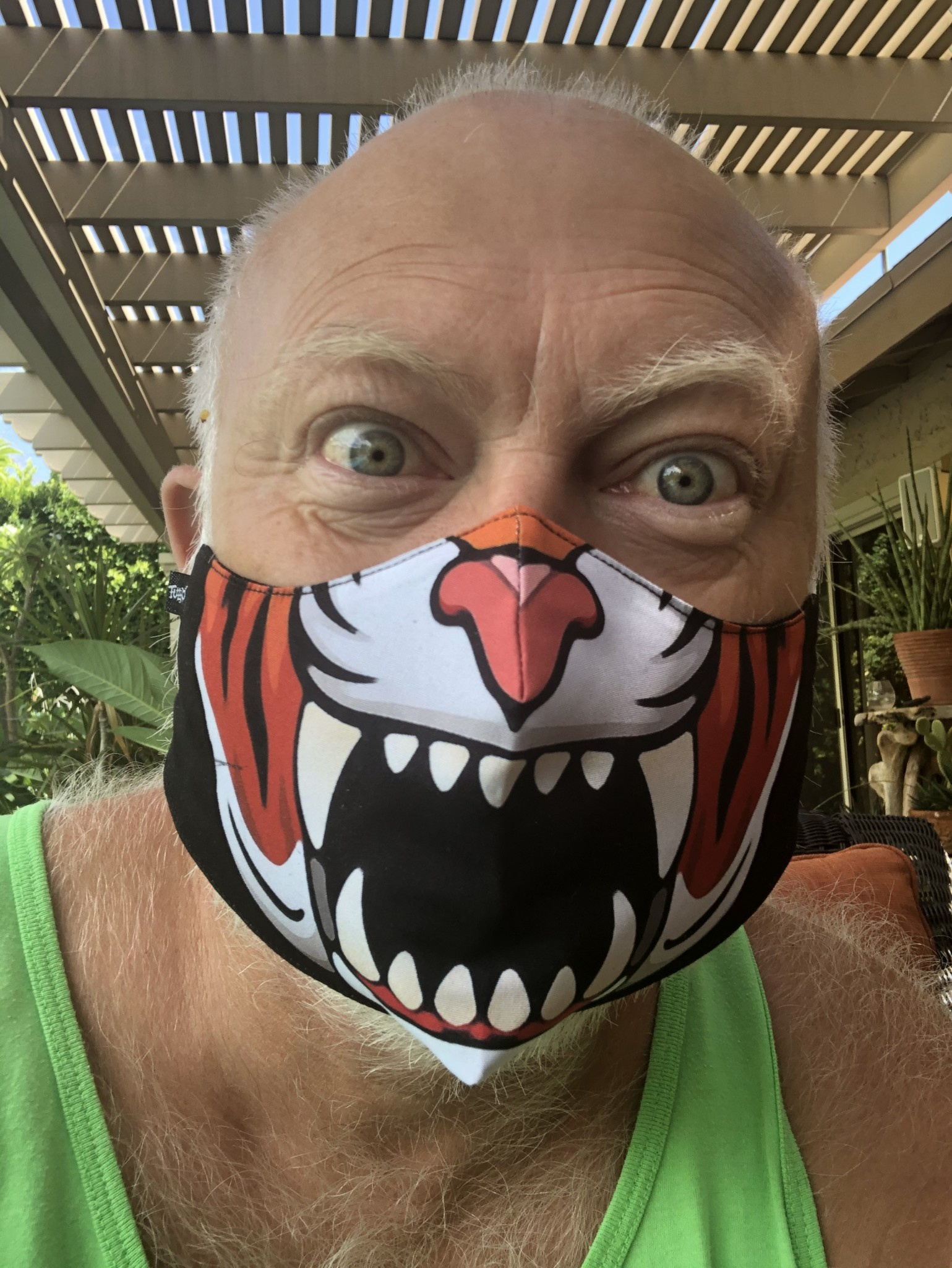 Face Mask, Which one is you? Tiger
