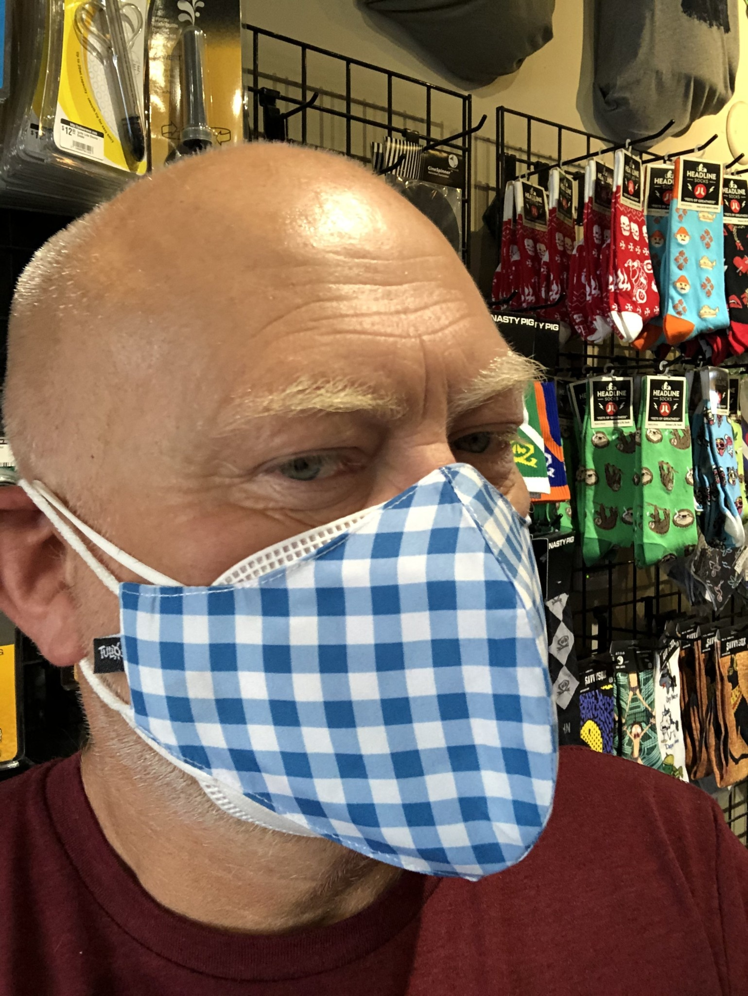 Face Mask, Which one is you? Blue Gingham