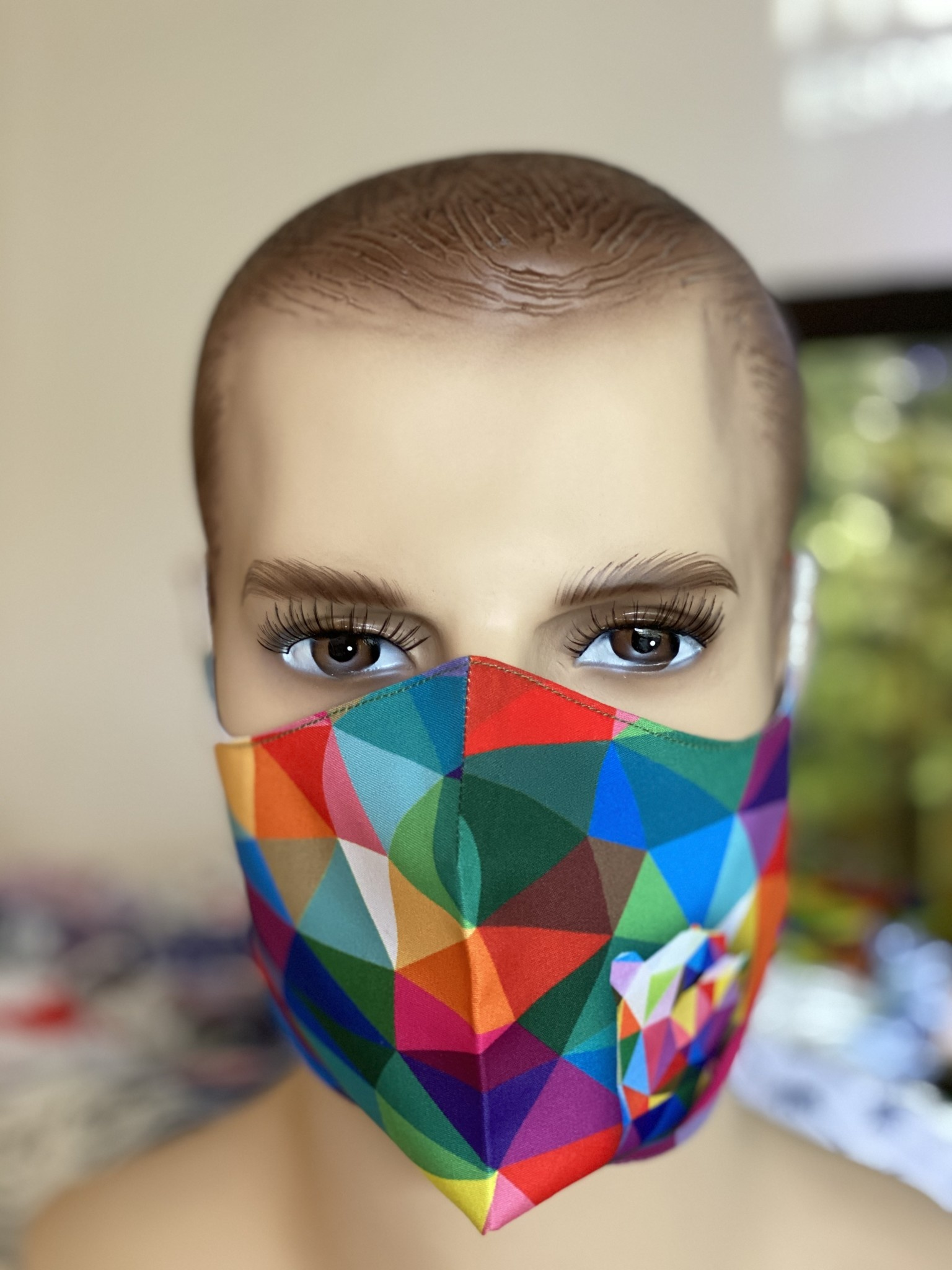 Face Mask, Which one is you?  Geo Rainbow Bear