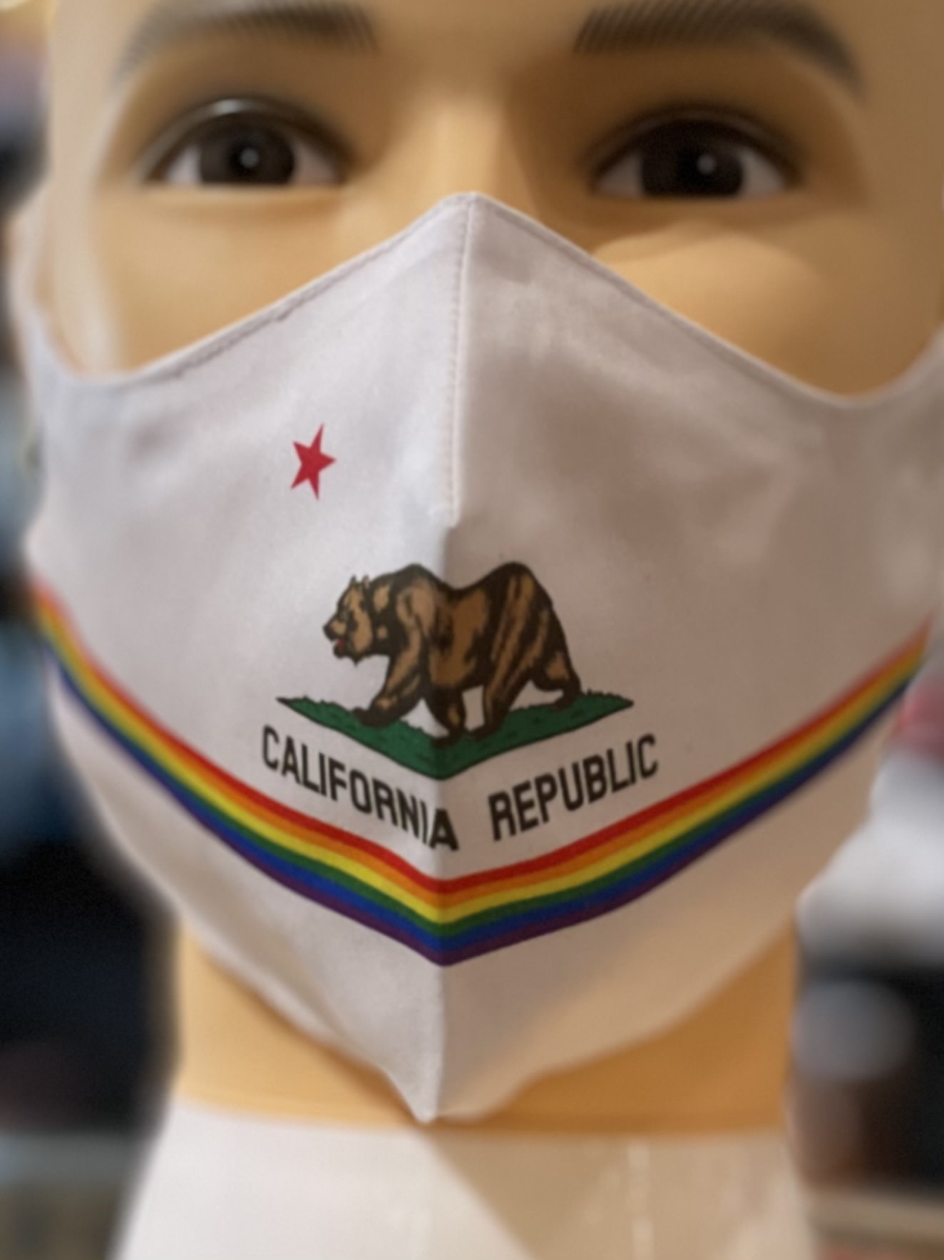 Face Mask, Which one is you?. CA Flag 'Pride'