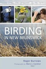 Birding In New Brunswick F18