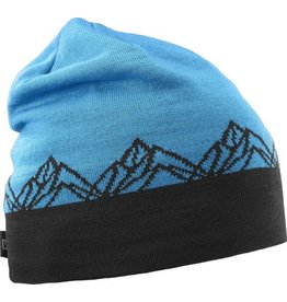 Salomon Salomon Graphic Beanie