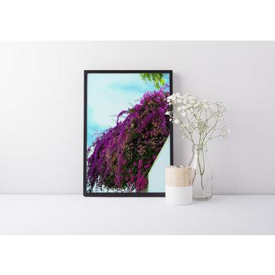 Veni Etiam Photography Photographie Spilling splendour - 8X12