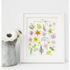 Hobeika Art Affiche - ABC fleurs sauvages