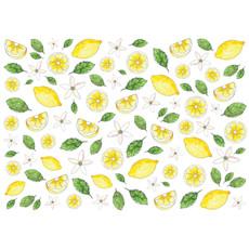 Stéphanie Renière Carte - Citrons