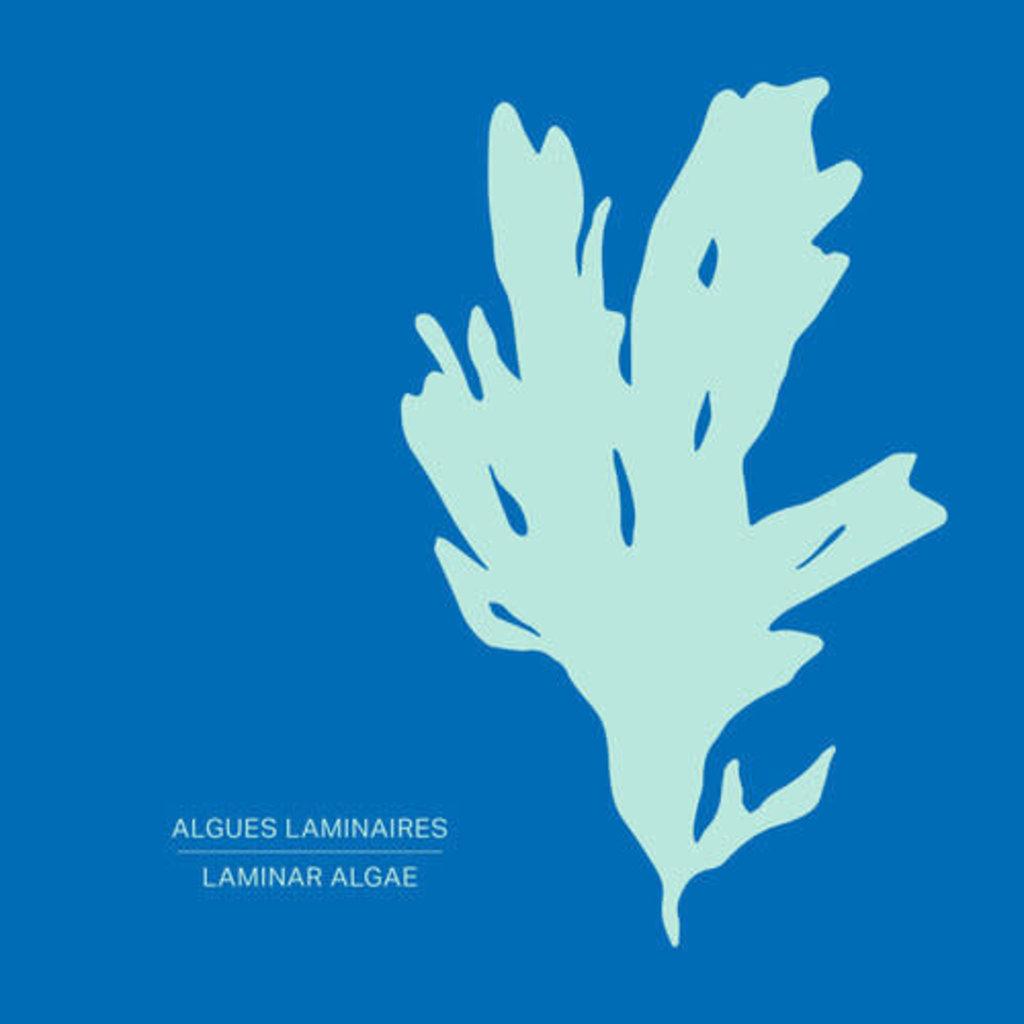 Les Pétards Revitalisant + Masque aux algues laminaires