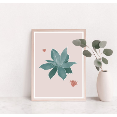 Les barbos Affiche - Illustration Agave