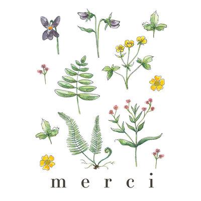 Stéphanie Renière Mini carte - Merci (botanique)
