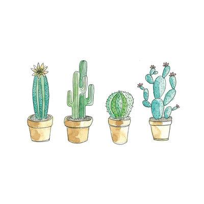 Stéphanie Renière Mini carte - Cactus