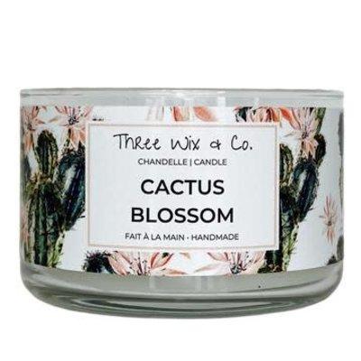 Three Wix & Co. Chandelle à trois mèches - Cactus Blossom