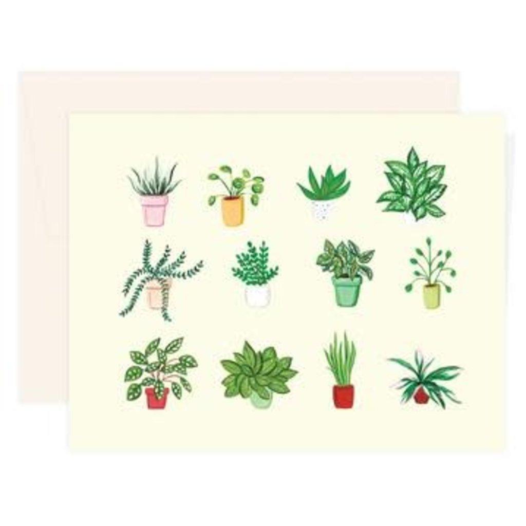 Paige & Willow Carte - Variétés de plantes