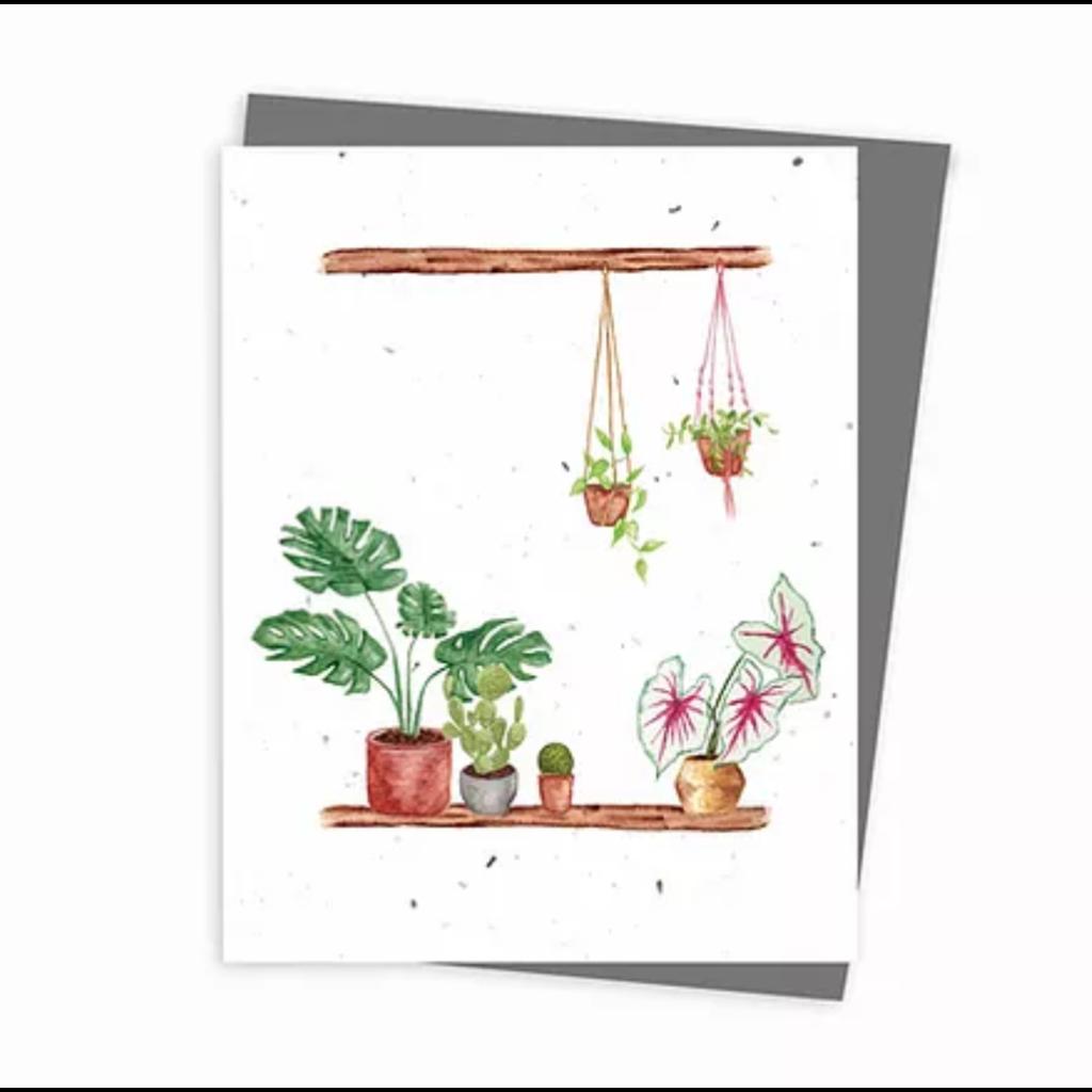Hobeika Art Carte ensemencée - Plantes d'intérieurs