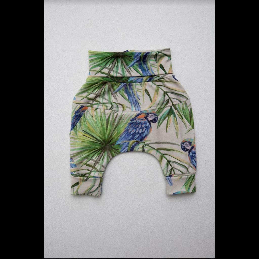 Little Yogi Pantalon évolutif - Perroquets bleus