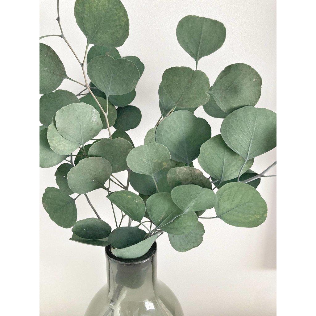 Eucalie Art Floral Bouquet - Eucalyptus Populus