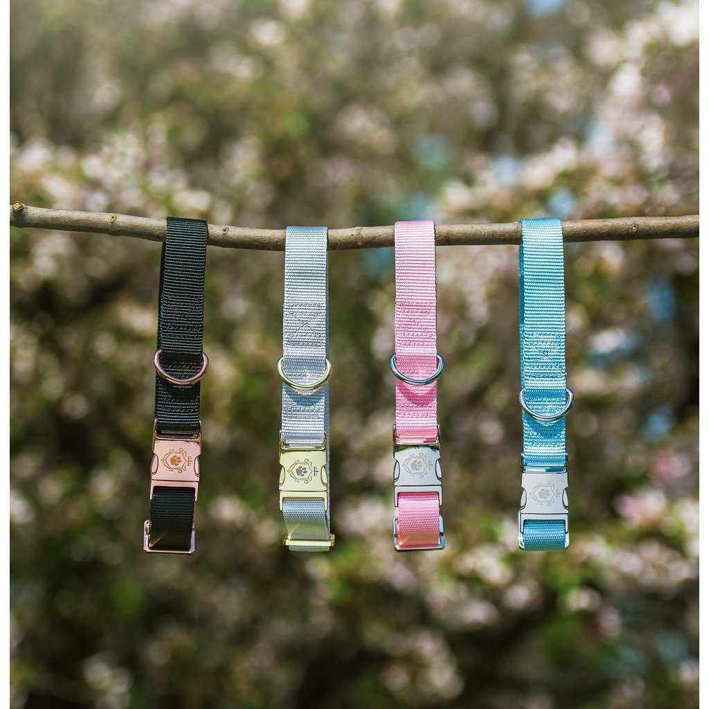 Idoggos Collier pour chiens - Opal