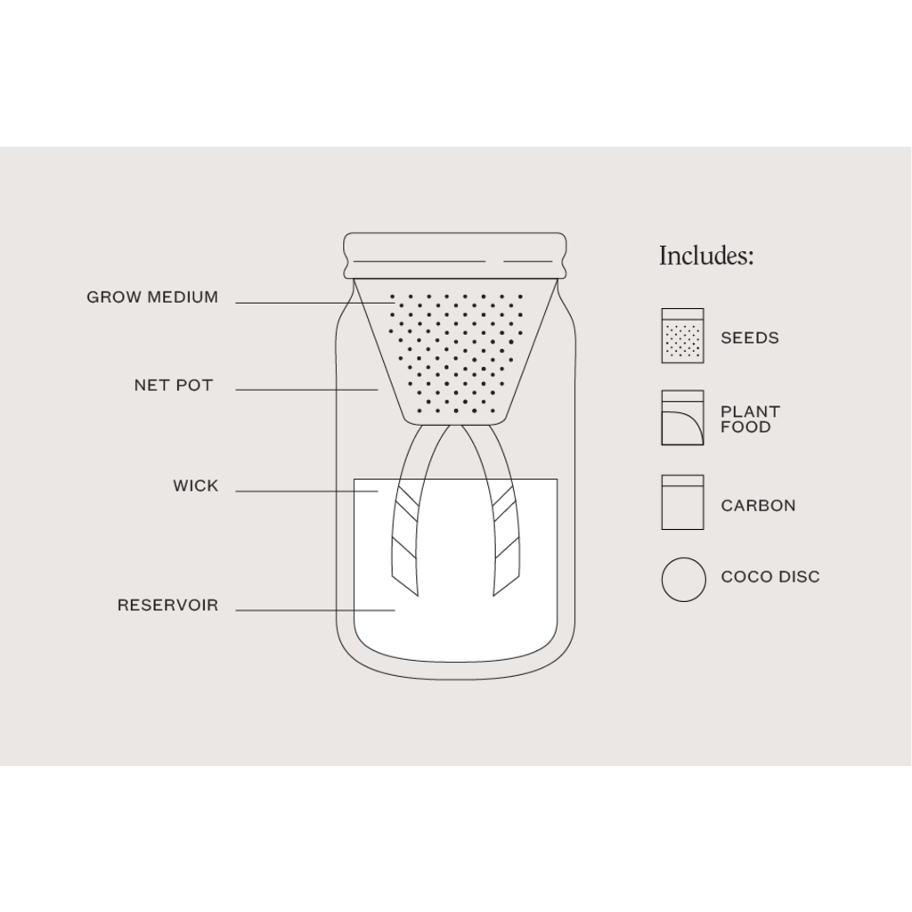 Modern Sprout Pot de fines herbes - Persil