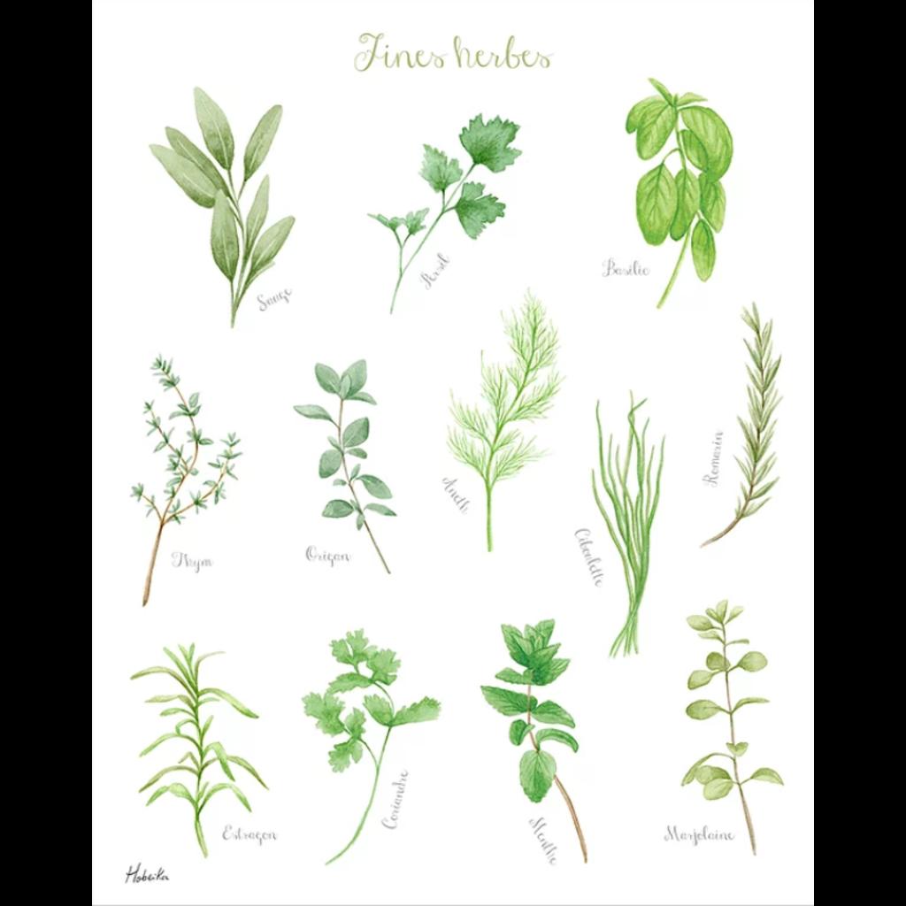 Hobeika Art Affiche - Fines herbes