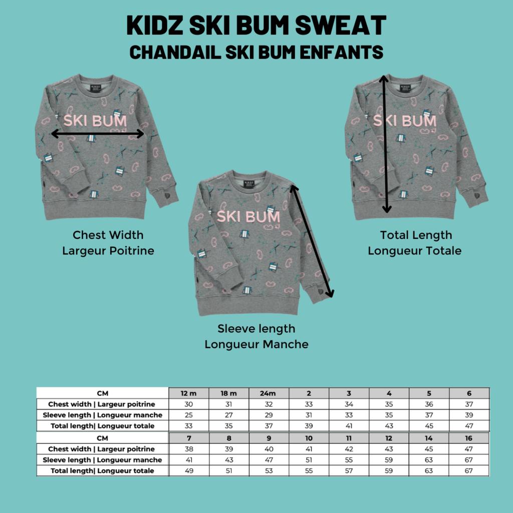 Birdz Chandail Ski Bum pour enfants - Gris à motifs