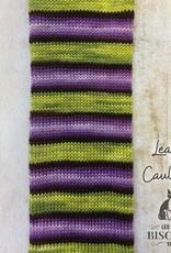 BC Bis-Sock Chaudron Baveur/Leaky Cauldron