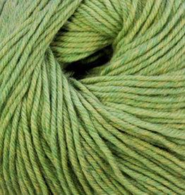 Cascade 220 SW 905 Celery