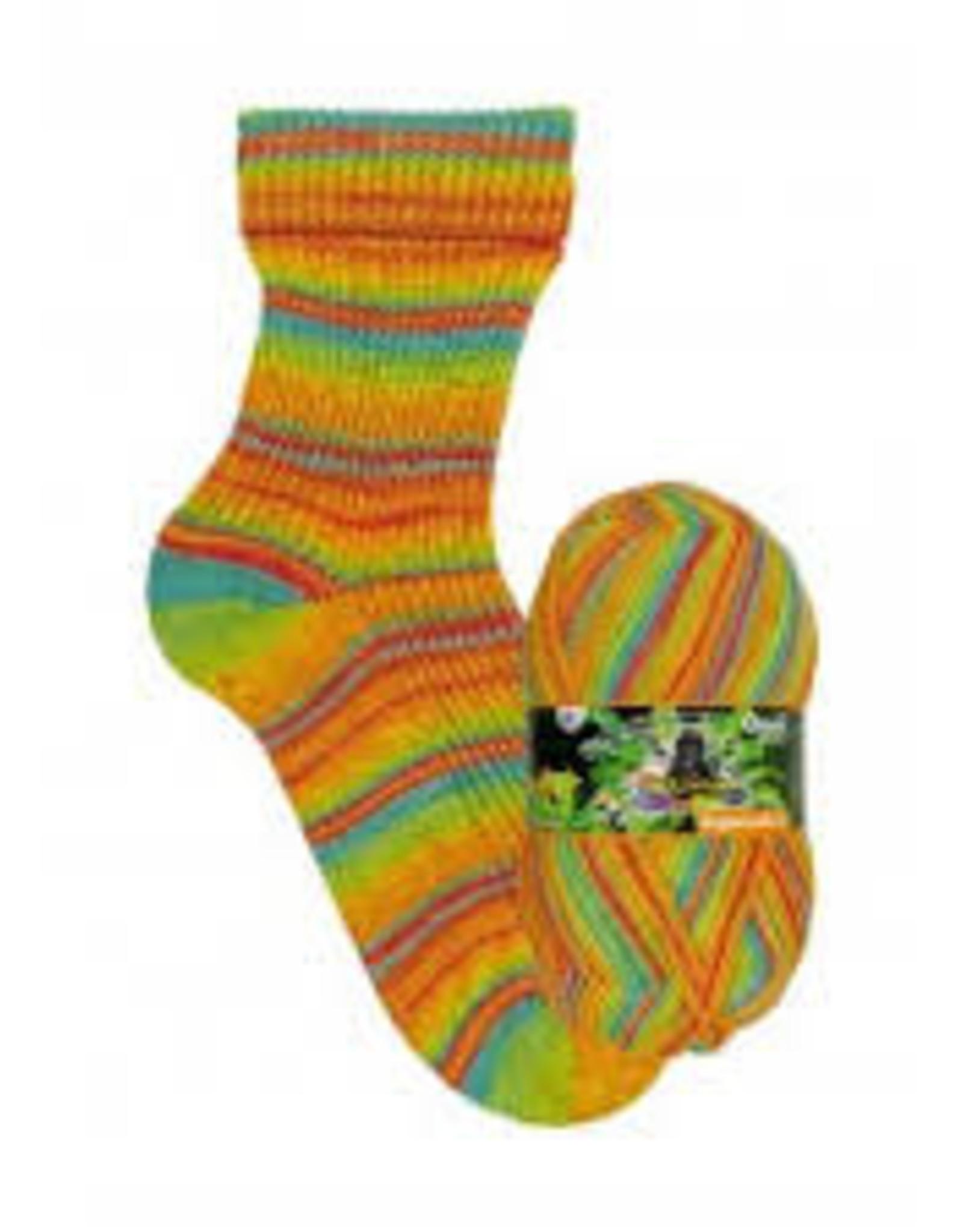 Opal Rainforest 16 - 9907