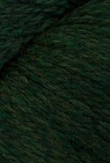 Cascade Eco Wool 2445 Shire