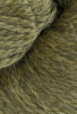 Cascade Eco Wool 2452 Turtle