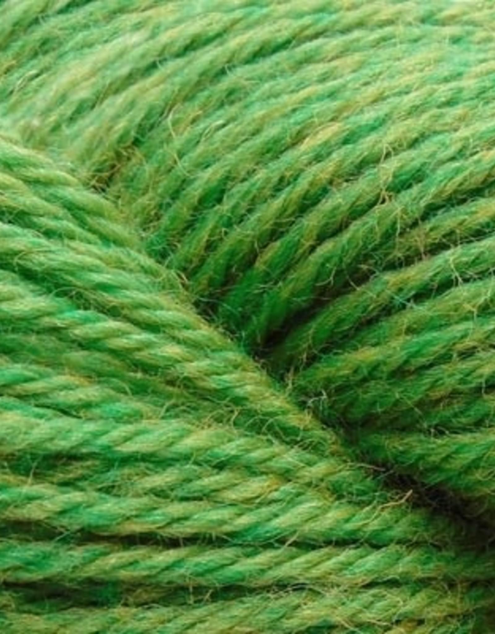 Cascade 220 1035 Fern