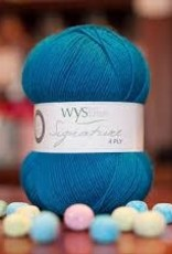 WYS WYS Signature 4 Ply Solids - Blueberry Bonbon 365