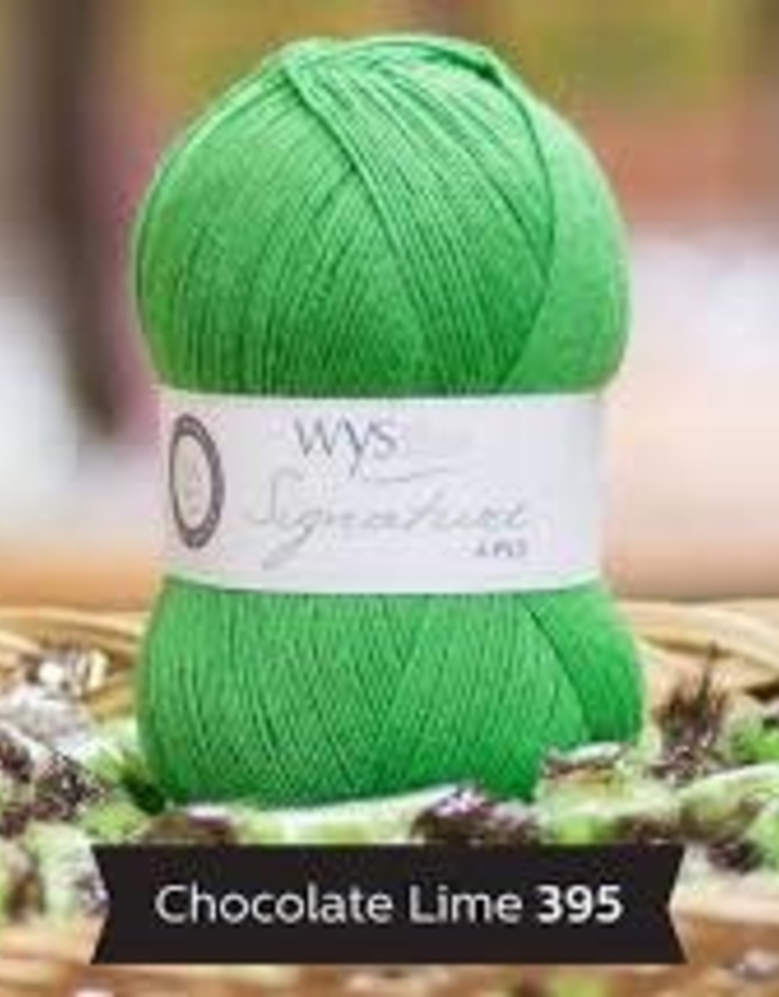 WYS WYS Signature 4 Ply Solids - Chocolate Lime 395