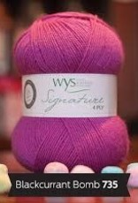 WYS WYS Signature 4 Ply Solids - Blackcurrant Bomb 735