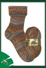 Opal - Rainforest 17 - 11093