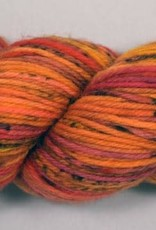RD SW Worsted Anticipation