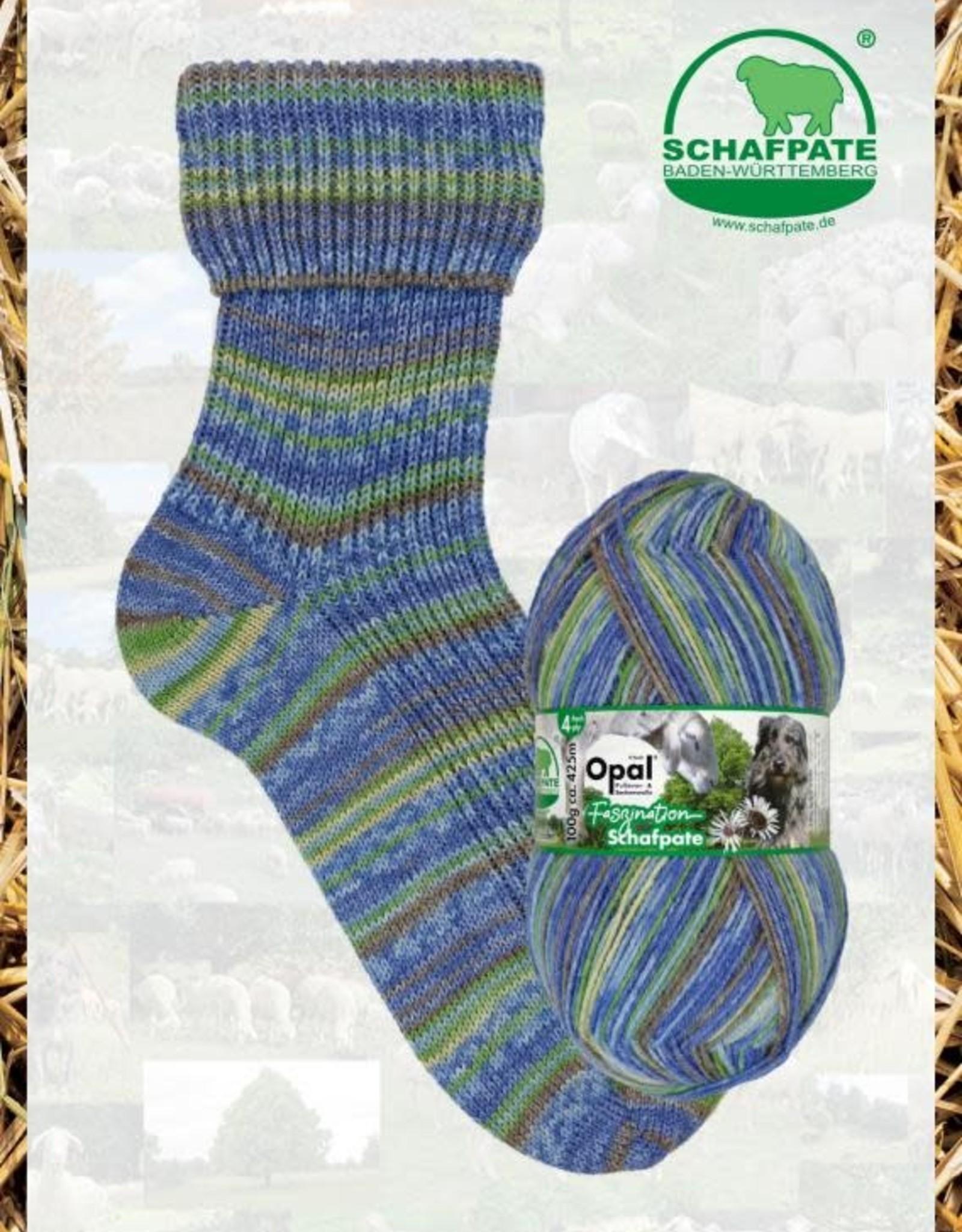 Opal Schafpate 13 - 11031