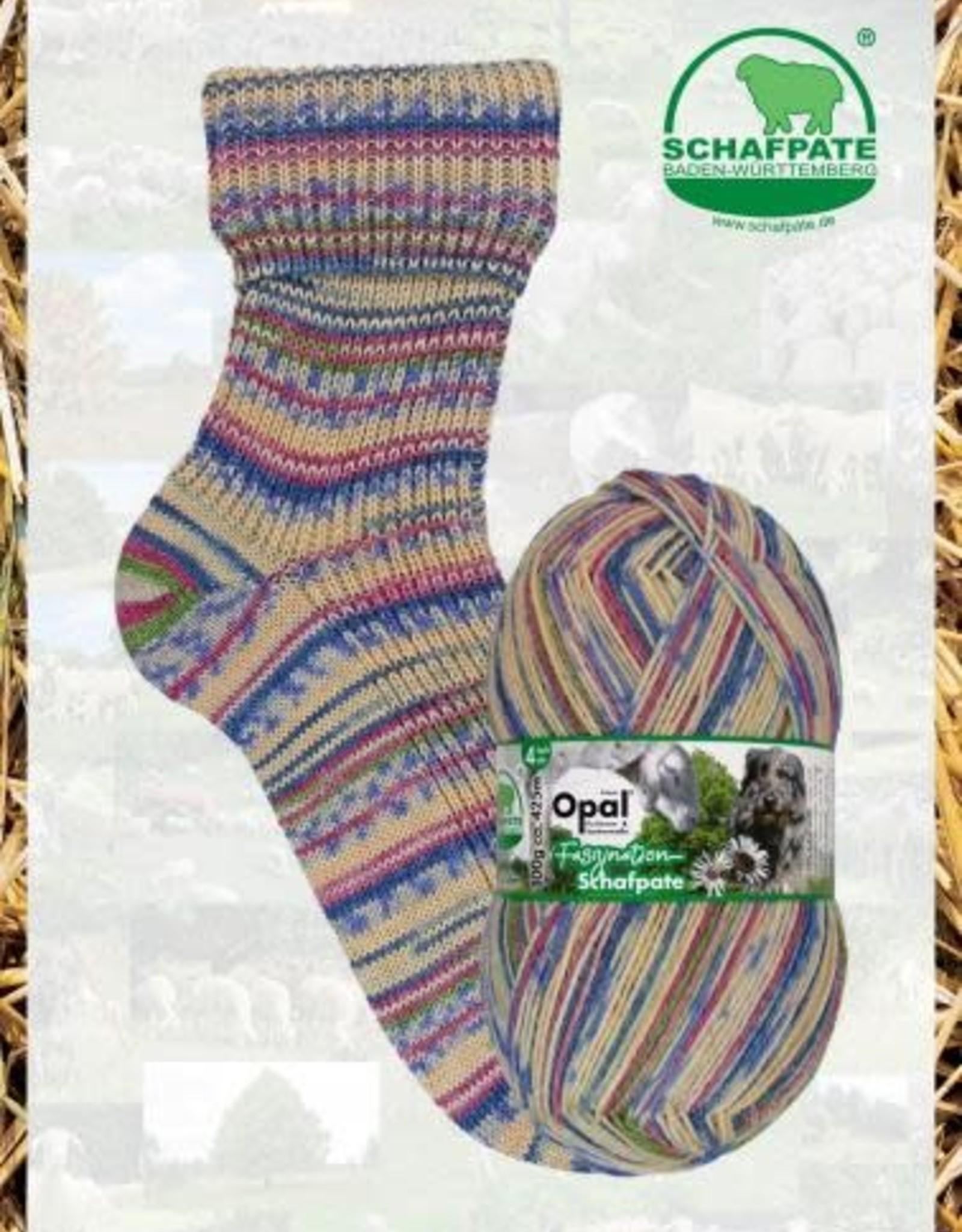 Opal Schafpate 13 - 11037